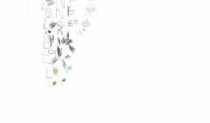 Il disegno di Lorenzo
